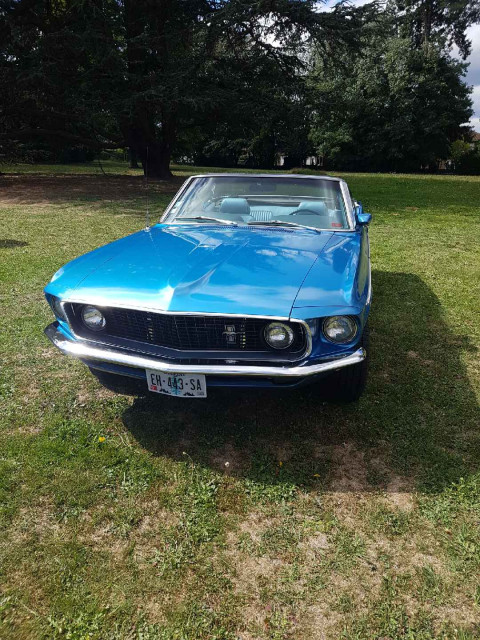 FORD Mustang 302 ci convertible  2